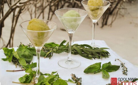 Рецепты сорбетов: с тархуном, базиликом, мятой и тимьяном