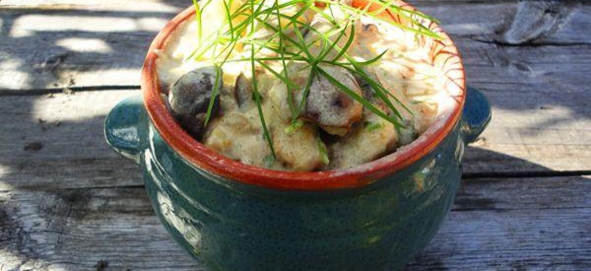 CoolWNS · Лесные грибы с картофелем и сметаной