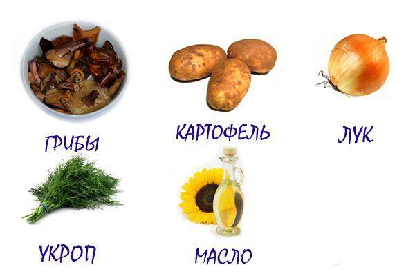 ингредиенты для картофеля с солеными грибами