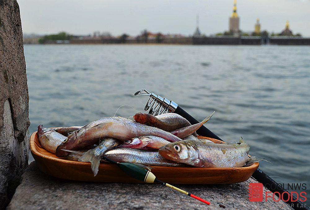Ленинградская кухня