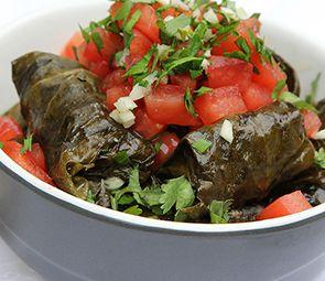 dolma-coolnws
