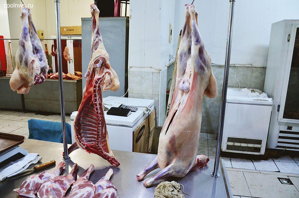Барашки в Баку повсюду - средний возраст 2,5 месяца. Мясо этих барашков настолько нежное, что его можно есть губами.