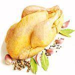 цыпленок желтый кукурузного откорма